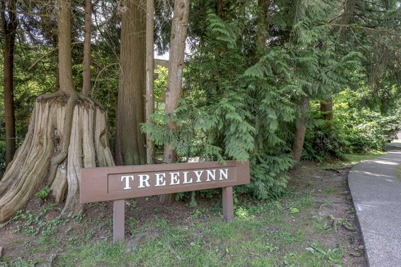Treelynn - 2620 Fromme | Condos For Sale + New Listing Alerts